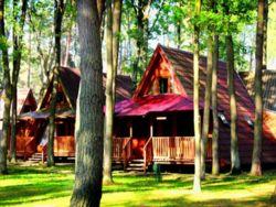 Ośrodek Wypoczynkowy Leśny Zaułek, Domki i pokoje do wynajęcia