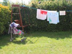 Nasz ogród i nasi goście :)