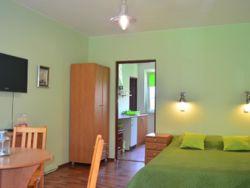 salon w zielonym