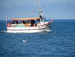 Rejsy darmowe po morzu dla naszych gości